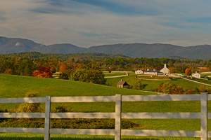 Farms for sale in Albemarle County