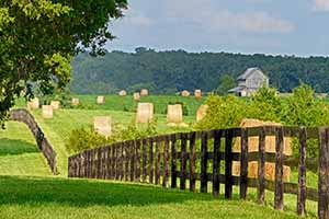 Farms for sale in Louisa County