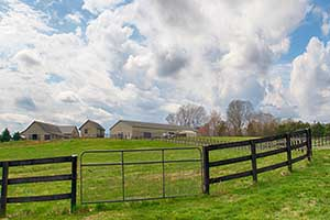 Horse Farm in Madison County Virginia for Sale