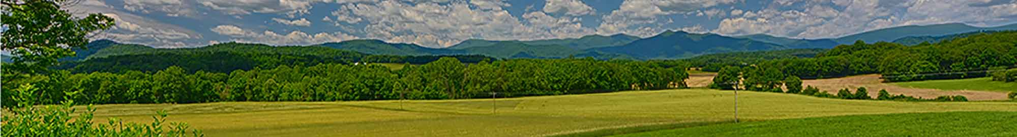 Farms in Madison County VA for Sale